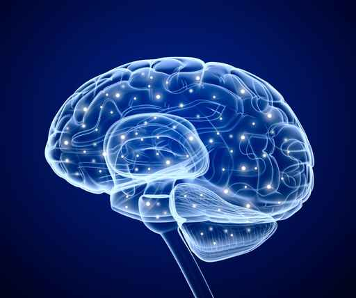 Brain impulses. Thinking prosess.